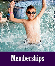 Button for Memberships Page
