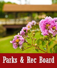 Button to Parks and Recreation Page