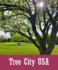 Button to Tree City USA page