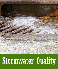 Stormwater Quality Button