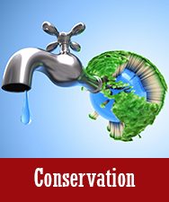 Conservation Button