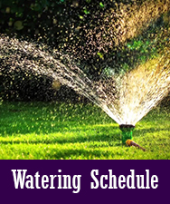 Watering Schedule Button
